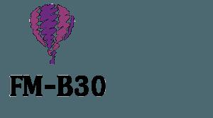 FM-B30